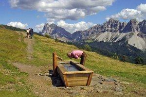 Brixen und Umgebung 04